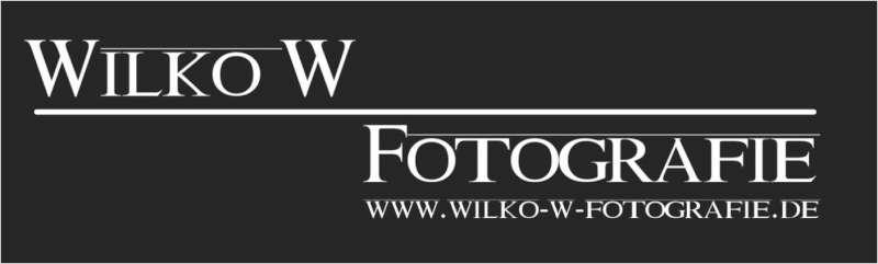 WilkoW-800